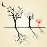 Tree. Black and red silhouette of a tree without leaves Royalty Free Stock Images