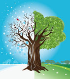 Tree. Vector illustration of a tree at different seasons royalty free illustration