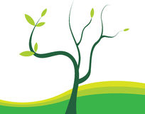 Tree. An illustration of a  single tree Royalty Free Stock Image