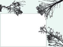 Tree. Vector illustration - silhouette of a tree Royalty Free Stock Images