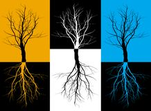 Tree. Three silhouettes of trees with roots Royalty Free Stock Image