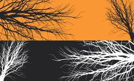 Tree. Black and white silhouettes of branches of trees Royalty Free Stock Images
