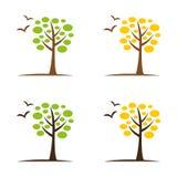 Tree6 Imagenes de archivo