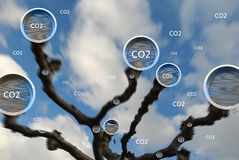 Tree absorbing carbon dioxide concept. Tree absorbing carbon dioxide trough round multiple vents at great speed on blue sky background Royalty Free Stock Photo