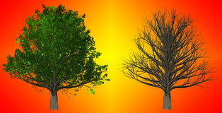 Tree  on abstract background, 3D Illustration Royalty Free Stock Photos