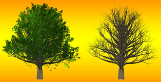 Tree  on abstract background, 3D Illustration Royalty Free Stock Images