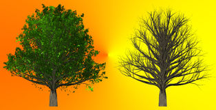 Tree  on abstract background, 3D Illustration Royalty Free Stock Photography