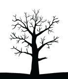 Tree vector silhouette Stock Image