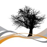 Tree with abstract waves royalty free illustration