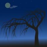 Tree against night sky royalty free illustration