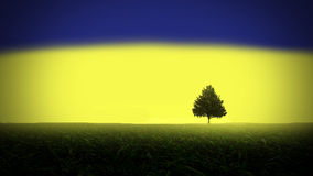 Tree against sunlight. Royalty Free Stock Photos