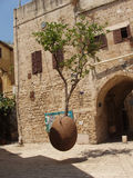 The tree in the air, Old Jaffa Stock Photos