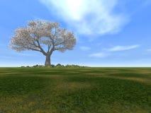 Tree alone Stock Photo