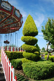 Tree in amusement park Stock Images