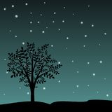 Tree And Stars Royalty Free Stock Image