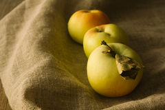 Tree apples on linen cloth Royalty Free Stock Photos
