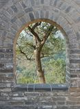 Tree in Archway Great Wall Royalty Free Stock Images