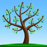 Tree with Arrows. Forward Moving / Progress / Financial / Achievement Concept Royalty Free Stock Photos