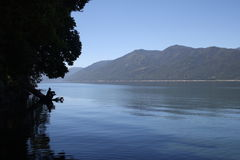 The tree as look like a man. A beautiful lake i chile Stock Image