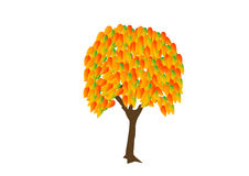 Tree_autumn Image stock