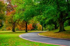 Pathway in the park and trees in Autumn stock photo