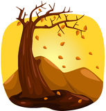 Tree in autumn. Illustration of landscape tree in autumn on white background Stock Image