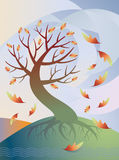 Tree in Autumn. Vector illustration of a sinuous tree losing it's leaves in the wind in autumn Stock Photos