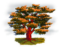 Tree in Autumn. Illustration of a old tree in autumn Royalty Free Stock Photos