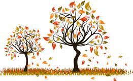 Tree autumn background, vector Stock Images