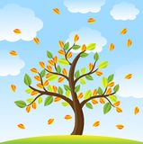 Tree with autumn leaves on a background blue sky Royalty Free Stock Image