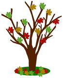 Tree with autumn leaves. Illustration Royalty Free Stock Photo