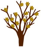 Tree with autumn leaves. Illustration Stock Photo