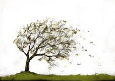 Tree in autumn storm Royalty Free Stock Photo