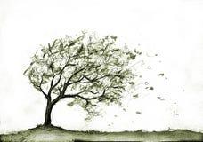 Tree in autumn storm Royalty Free Stock Photos