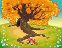 Tree in autumnal landscape. Vector coloured illustration Stock Images