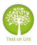 Tree av liv vektor illustrationer