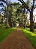 Tree avenue clumber park nottinghamshire. A view up to the victorian glass house over looking the walled kitchen garden through the tree lined avenue at clumber stock images