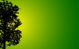 Tree Background Royalty Free Stock Images