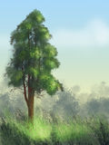 Tree. On a background of blue sky, beautiful grass Stock Images