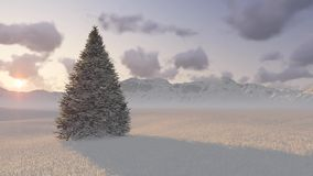 Tree on the background of mountains. Tree against mountains at sunset stock video footage