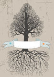 Tree and Banner Stock Images