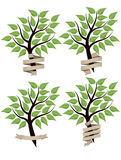 Tree banner Royalty Free Stock Photo