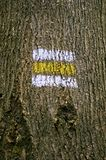 Tree bark with mark Royalty Free Stock Images