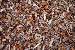 Tree Bark Mulch Stock Photography
