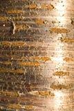 Tree bark texture - natural background. Tree bark texture useful as natural background Royalty Free Stock Photo