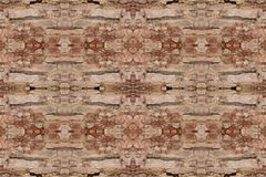 Tree bark texture pattern. wood rind for background stock photo