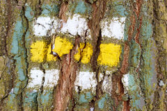 Tree bark texture with turistic sign Stock Photo