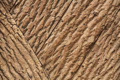 Tree bark wallpaper. Front view view of tree bark mosaic Stock Photos