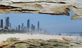 Tree Bark Window to Gold Coast City and Beach. Background Stock Photography