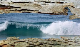 Tree Bark Window to Ocean Wave Royalty Free Stock Image